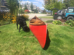 Chestnut leader Cruiser canoe