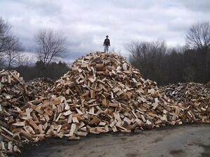 Firewood  Forsale!