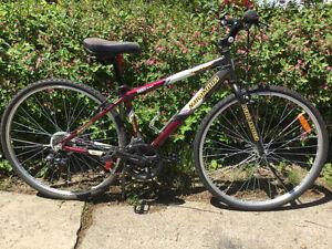 Vélo Hybride Nakamura  Cadre en 46 cm 21 vitesses