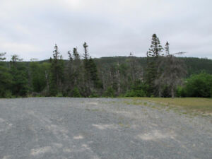 Approximately 10 acres cleared land on main road Holyrood.