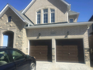 4 Bedroom House  in Westridge Available for Rent March 1st