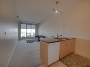 Spacious Condo, 1 BEDROOM + Den SW CALGARY