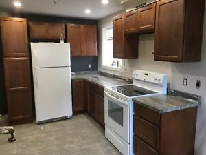 Newly Renovated One Bedroom Apartment in Airport Heights St. John's Newfoundland image 2