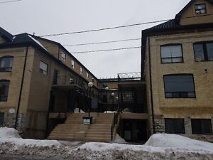 Trendy Investment In Uptown Waterloo Perfect For Students!