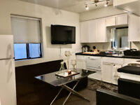 LARGE MICRO-SUITE OFF ROBSON/BUTE