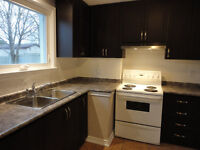 Gorgeous Renovated 3 BR Main Floor Apt Available Immediately