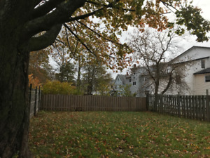 Ch'town 1 Bedroom Apt. Heat, Electricity & Parking inc. $1075