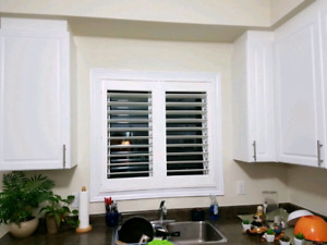 Dual shades and California shutters free estimates 6478622009