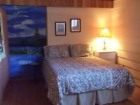 Furnished, spacious 2 bedroom suite on the lake in Chase