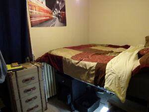 Room on campus in App. with 2 friendly roomies Jan-August $570