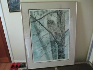 Great Gray Owl Signed Print by Heather North