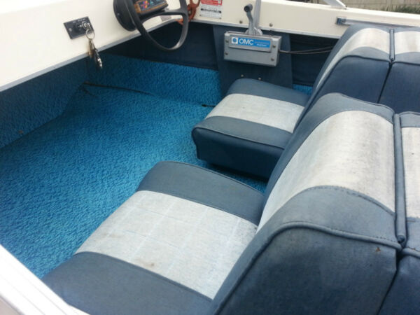 Used 1980 Peterborough/Alcan runabout
