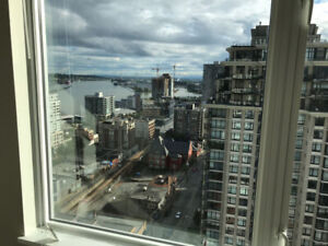 1 Bed Apartment available for rent in downtown New Westminster