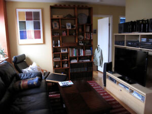 Beautiful, bright, fully furnished downtown apartment