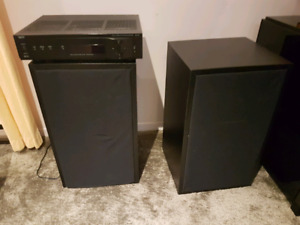 Realistic home made speakers