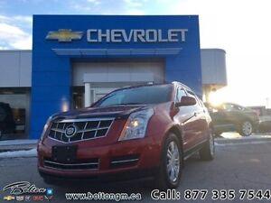 2010 Cadillac SRX   - $209.63 B/W