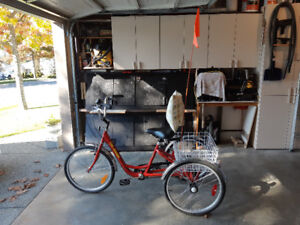 Tri-Rider Adult 3 Wheel Single Speed Bicycle in Great Condition!