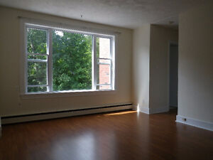 Fully Renovated Downtown 2 Bedroom with Heat & Hot Water Inc.