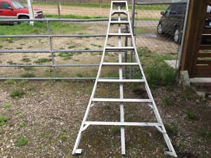 9 ft. Orchard 3 legged ladder