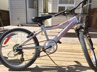 Raleigh Mountain Bike Only $50
