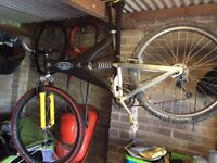 Trek Y33 and Marin lite for sale