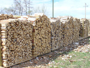 Selling true cords hand stacked (4x4x8ft) of Birch, Pine, Spruce