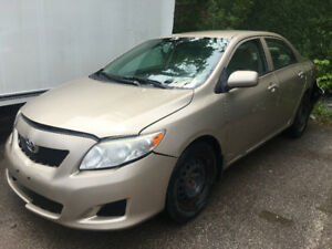 2009 Toyota Corolla just in for sale at Pic N Save!