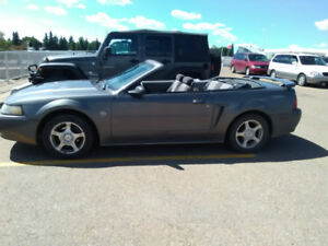Need to sell 2004 Mustang Convertible