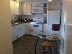 Furnished two bedroom apartment near downtown - available now