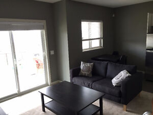 Newly Renovated 1-Bedroom Suite