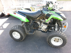 Arctic Cat DVX 250