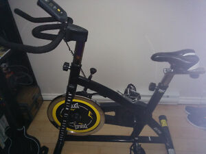 Velo spinning Everlast