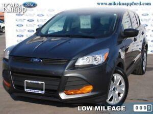 2016 Ford Escape S  -  Cruise Control - Low Mileage