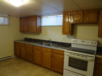 lNewly renovated 1 bdrm basement apt in triplex near hospital
