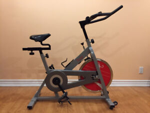 Sunny Chain Drive Indoor Cycle Bike with 30 lbs Flywheel –Silver