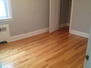 Big Room in Beautiful 3-Bdrm Apartment - Ottawa U