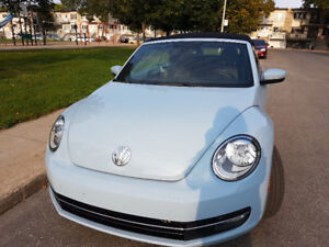New Beetle cabriolet 2014