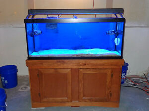 Marineland 75 Gallon aquarium, stand, heater and lights