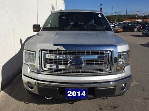 2014 Ford F-150 XLT Peterborough Peterborough Area image 2