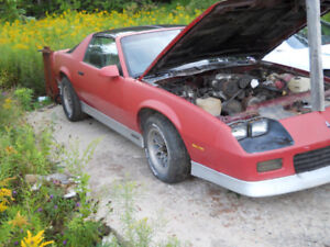 last chance ---86 t top camaro 5 speed