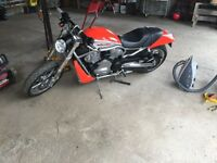 Harley vrod for sale or trade