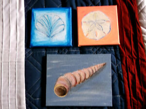 small sea shell paintings