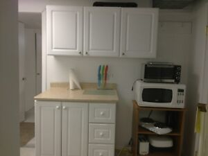 FRN HUGE 1 BDRM BSMENT SUITE-950/INCL ALL UTIL + NET & SAT Edmonton Edmonton Area image 4
