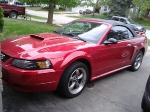 2001 Ford Mustang gt convertable