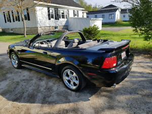 2001 ford mustang GT convertible