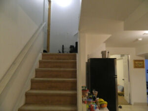 2 room Spacious Basement Apartment for Rent