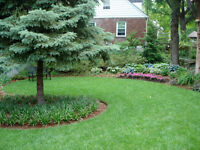 Property Care - Lawn and Tree Service.