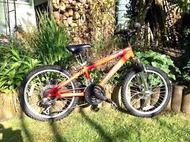 Child's Red Rooster SL950 Bicycle