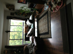 One bedroom apartment sublet