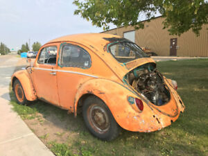 1964 Type 1 VW Bug
